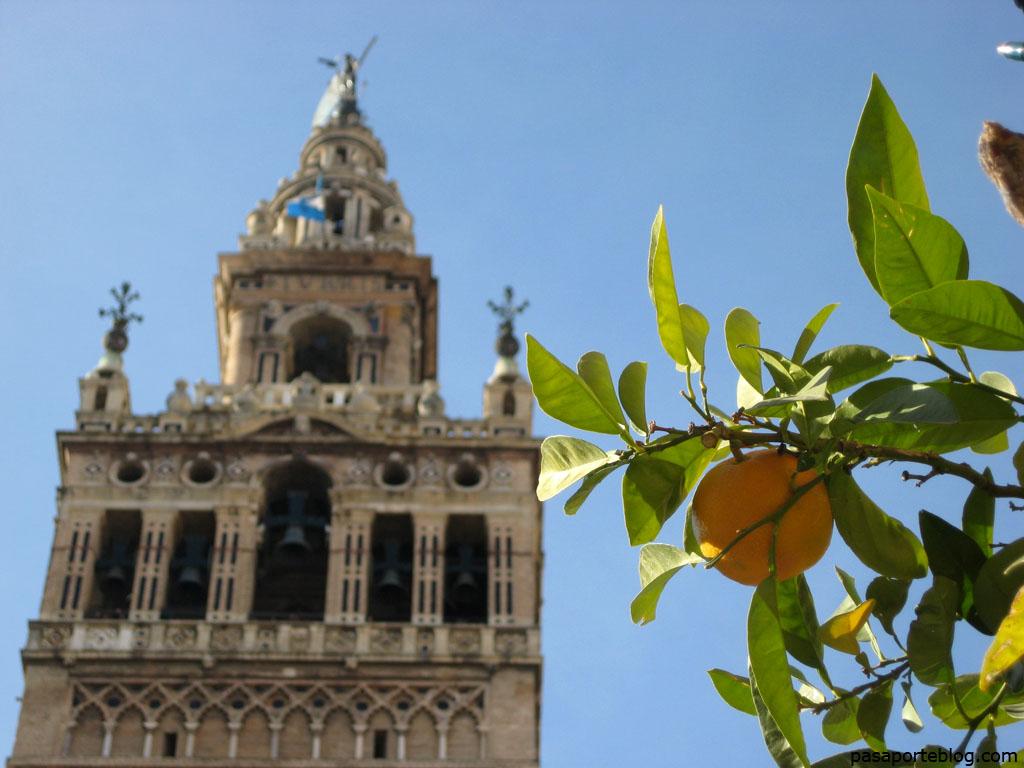 La Giralda, Sevilla, España