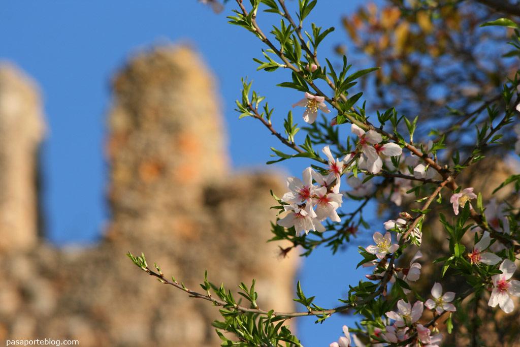 Castillo de Jativa
