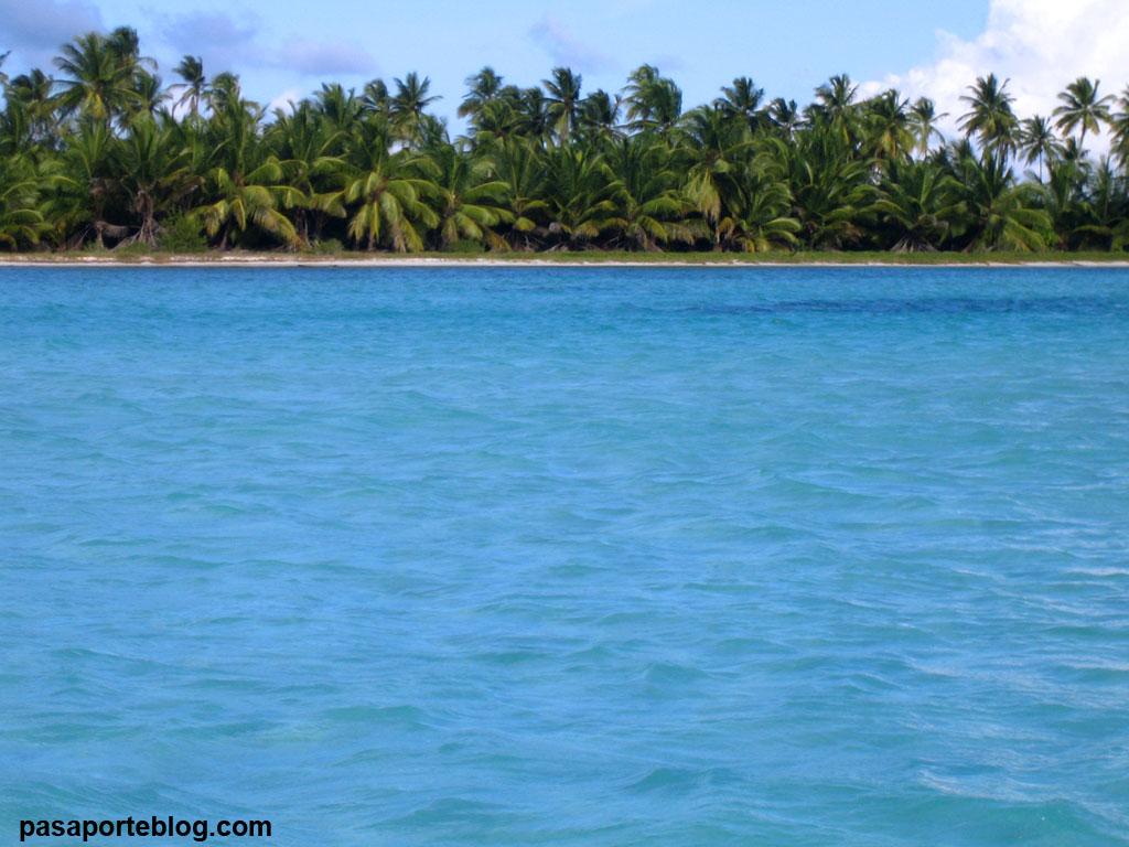 aguas cristalinas en isla saona