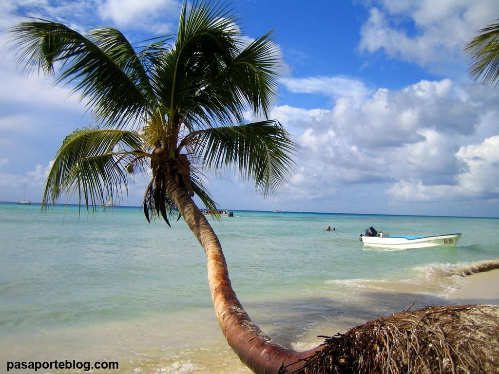 Isla Saona, excursion desde Punta Cana