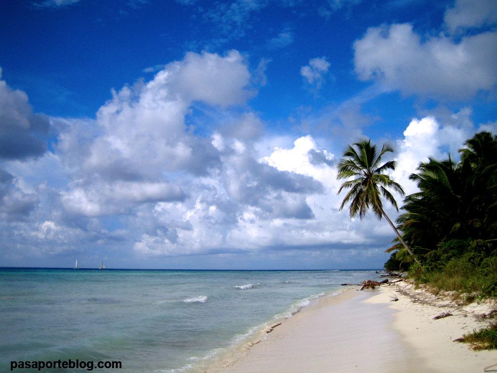Playa de Isla Saona