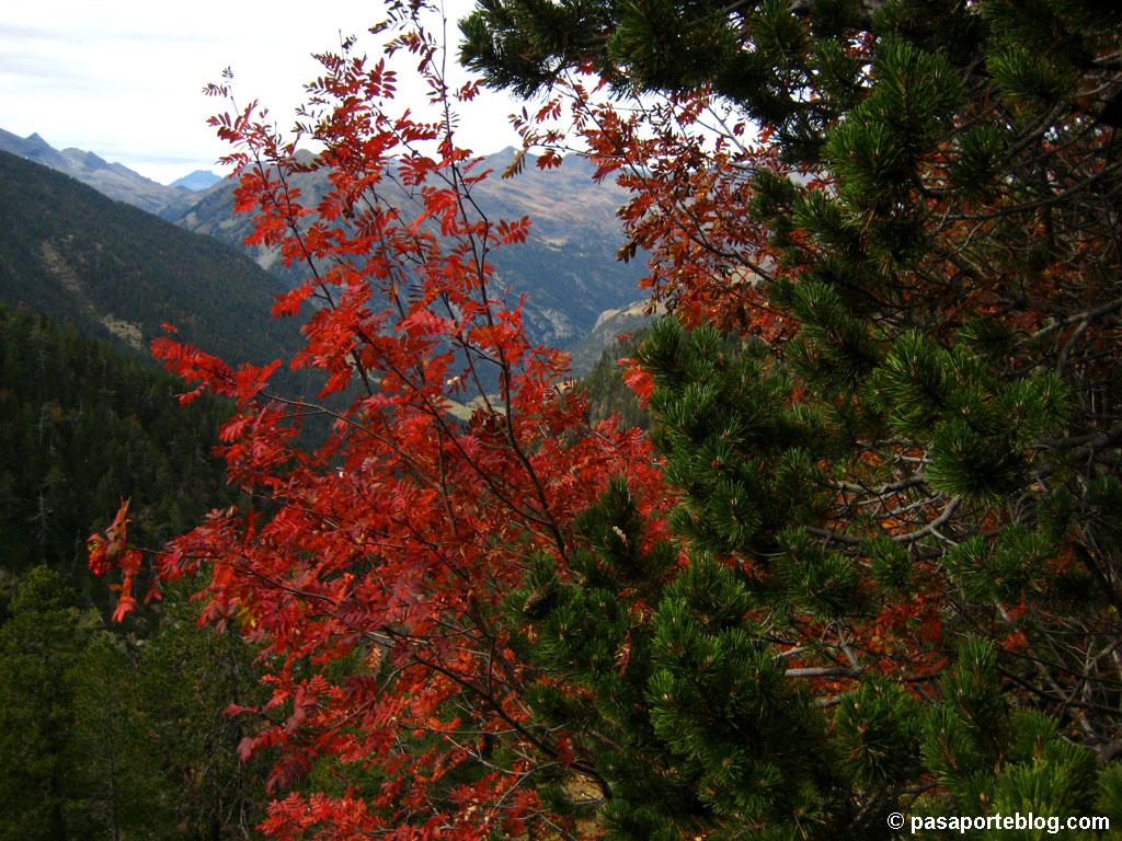 Otoño en Pirineos