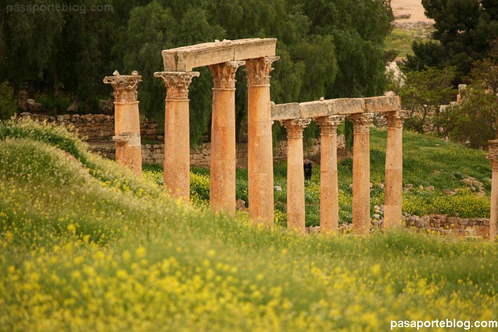 Viaje Jordania Jerash Columnas romanas