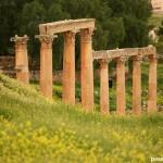 Jerash, Gerasa la antigua roma en Jordania