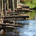 Puente sobre el rio Khwai…. Botswana