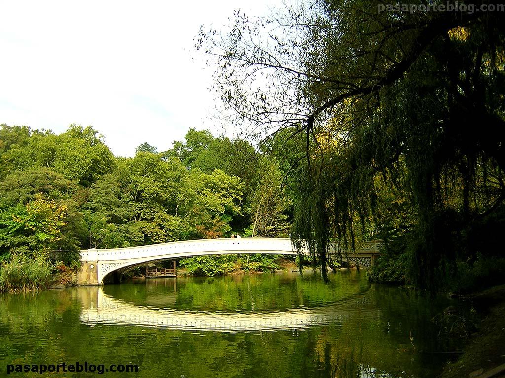 puente en central park, viaje a Nueva york