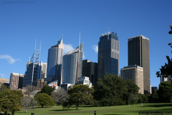 Sydney skiline royal botanic gardens