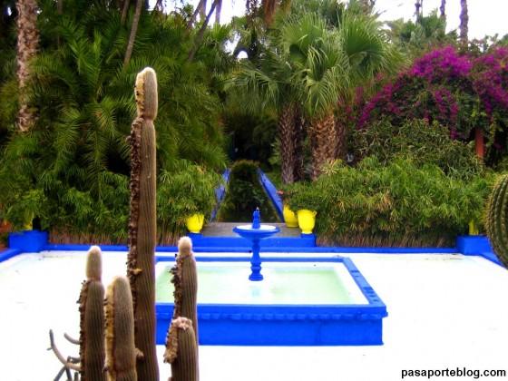 jardin yves saint laurent viaje a marrakech