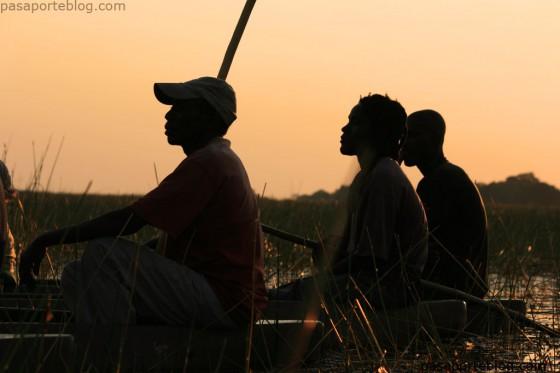 polers delta okavango botswana