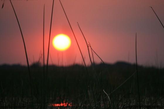 puesta de sol mokoro botsvuana