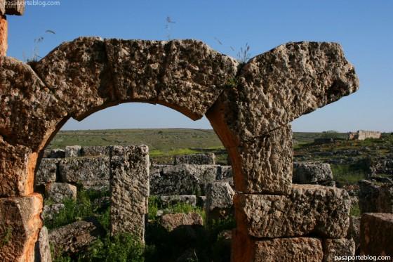 viaje siria jordania serjilla