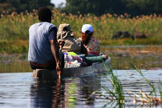 mocoro navegar en el delta del okavango