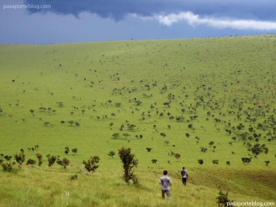 republica del congo sabana viaje por africa