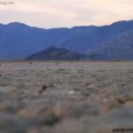 Death Valley, 88 metros bajo el nivel del mar, viaje costa oeste