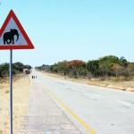 Peligro elefantes en la carretera, señales de tráfico en Namibia