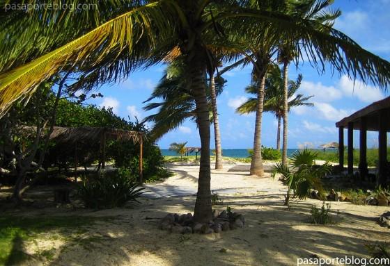 cayo levisa viaje a la isla de cuba