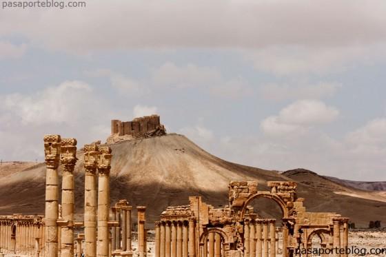 Palmira y castillo arabe medieval viaje a Siria