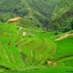 Sa Pa entre montañas y arrozales, viaje a Vietnam