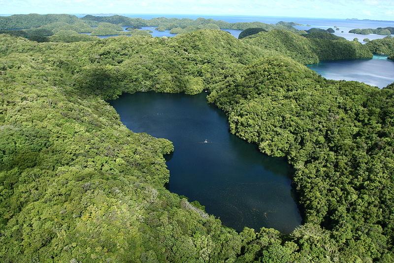 Lago de las Medusas (Palaos)