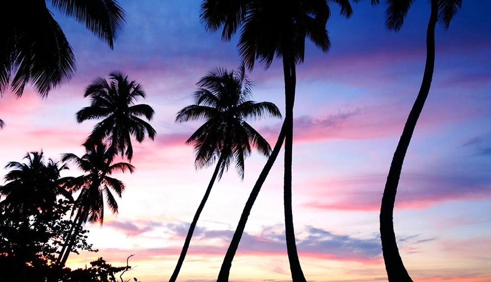 samana peninsula playas de la republica dominicana