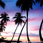 Península de Samaná República Dominicana