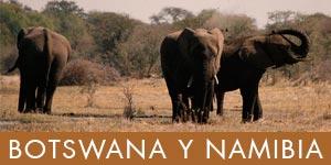safaris botswana y namibia