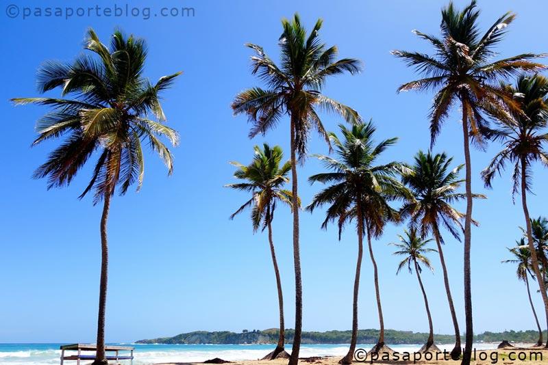 playas de punta cana playa macao blog de viajes