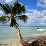 Isla Saona, excursión desde Punta Cana