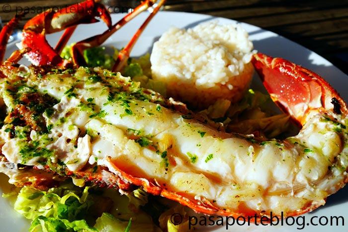langosta y bogavante delicias de la gastronomia de mallorca