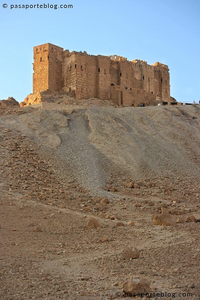 castillo de palmira desde el norte
