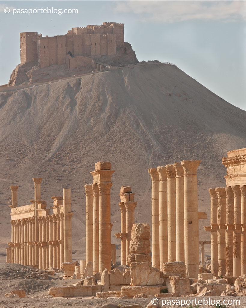 castillo de palmira qalaat-ibn-maan blog de viajes