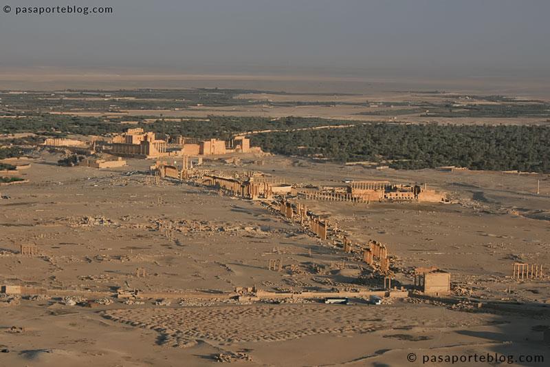 ciudad de palmira vista desde el castillo