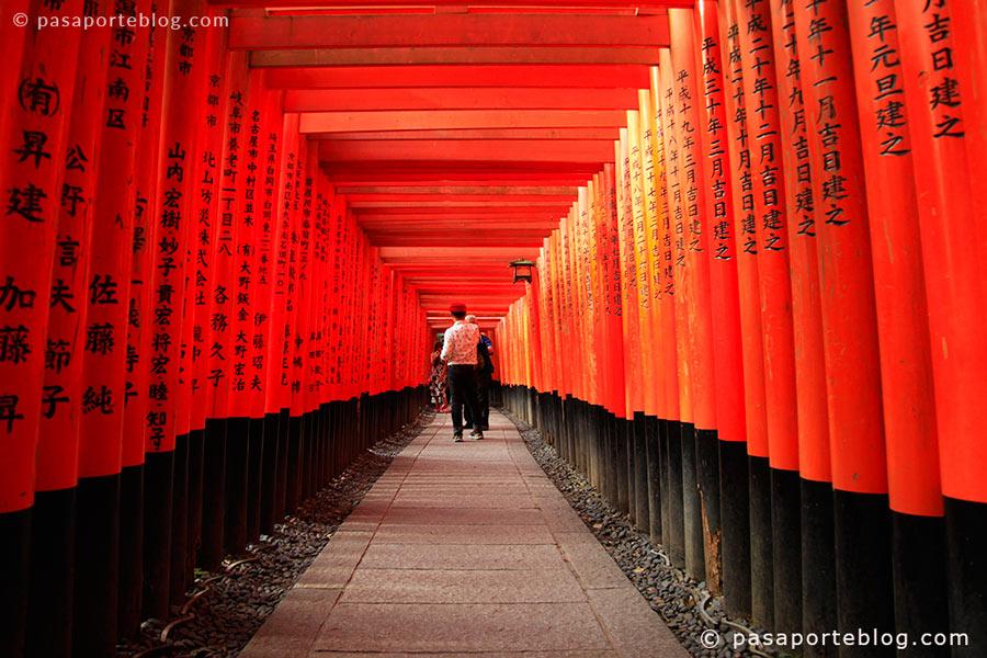 viaje a japón que ver en kioto y tokio