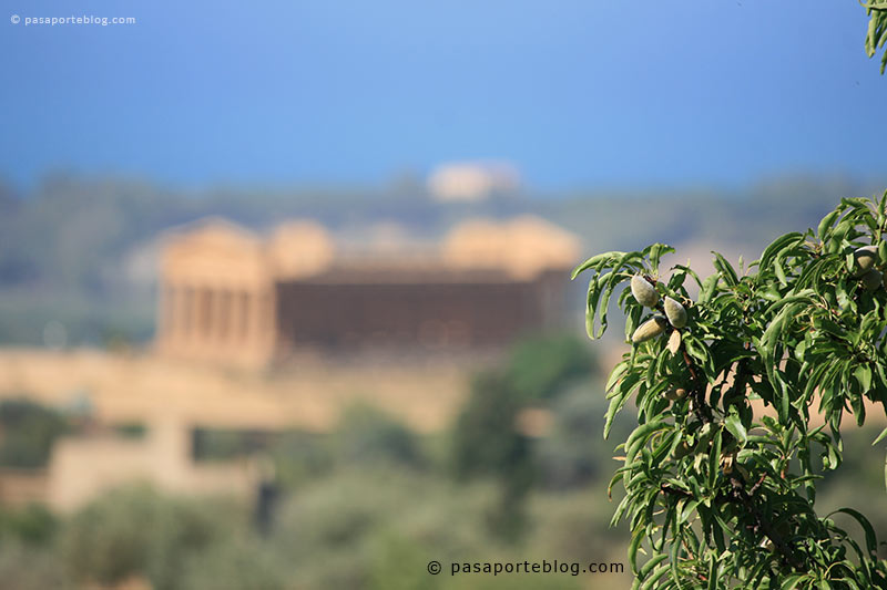 El Valle de los Templos, Agrigento